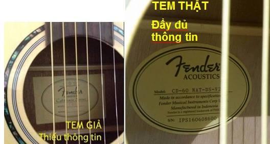CÁCH PHÂN BIỆT GUITAR FENDER CD-60 CHÍNH HÃNG VÀ CD-60 FAKE
