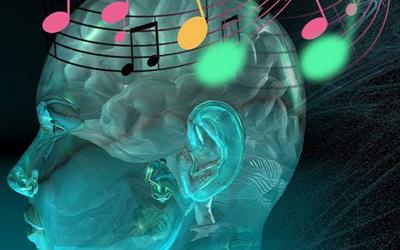 não bộ và âm nhạc