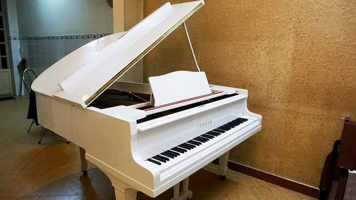 Điểm nổi bật của đàn Grand piano Yamaha G2 2